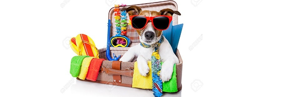 Аксесоари за пътуване и екскурзия