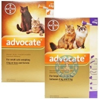 Bayer Advocate Cat