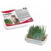 Camon Трева за котки
